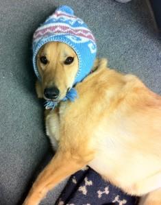 My pretty winter hat