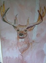 Peyton's majestic buck