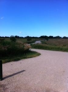 singing hills trail - 7-25-13