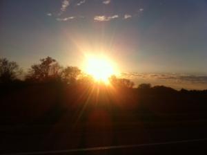 more sun