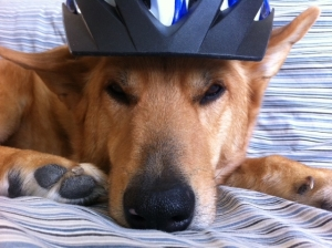 biker pee again