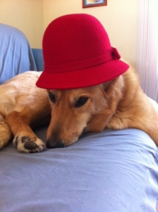 red hat 6