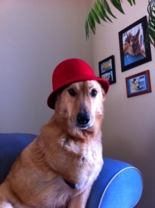 red hat 7