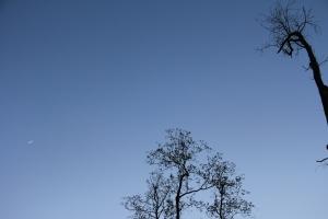 jordy' sky