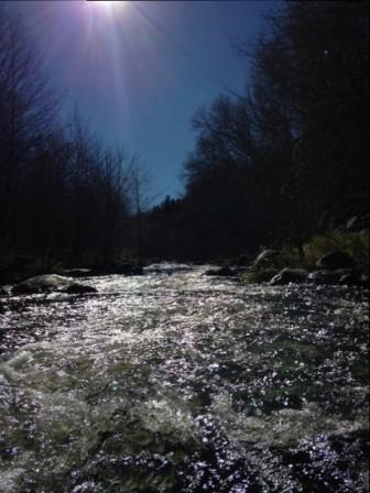 IMG_0406 a river running through